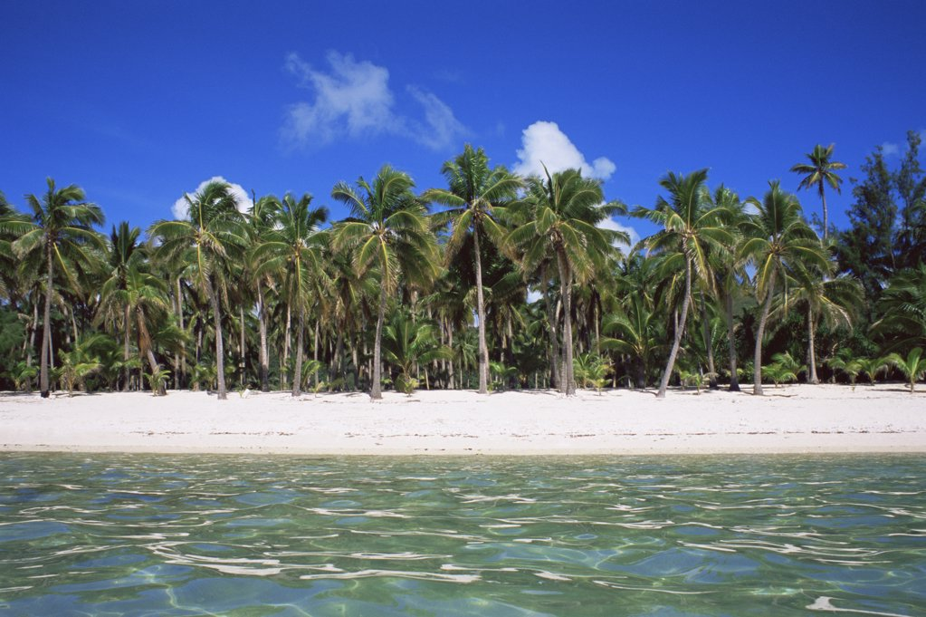 Stock Photo: 1439R-1019389 Tropical beach
