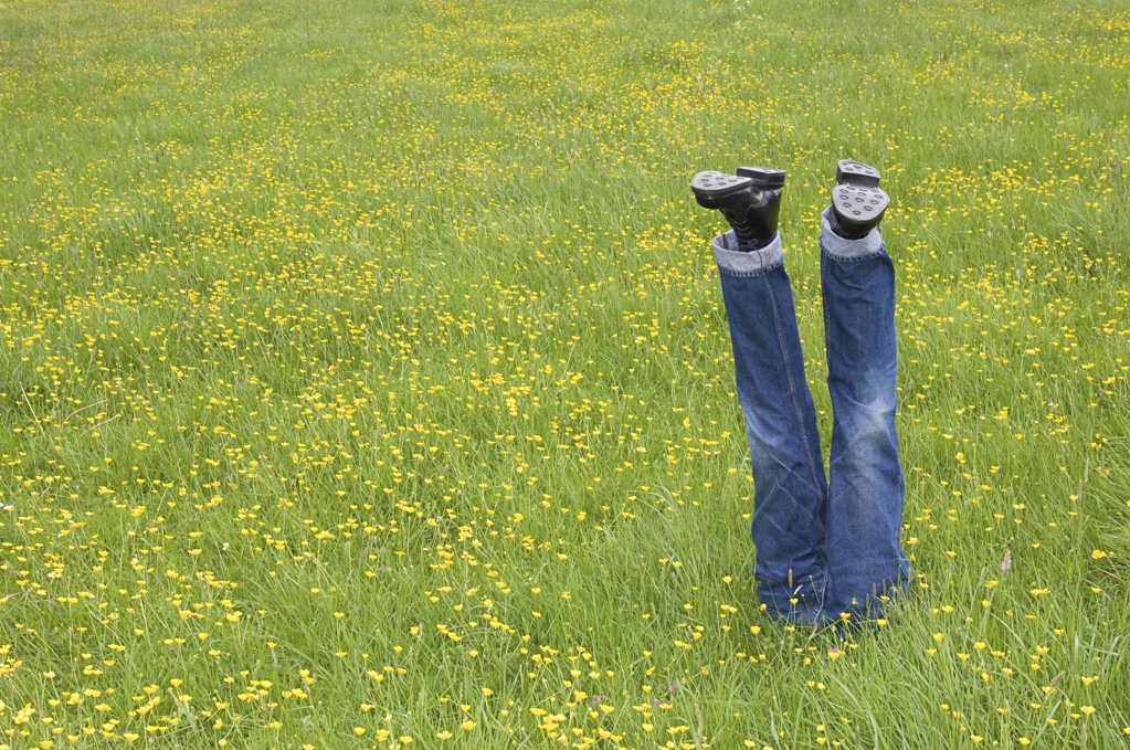 Mannequin legs in a field : Stock Photo
