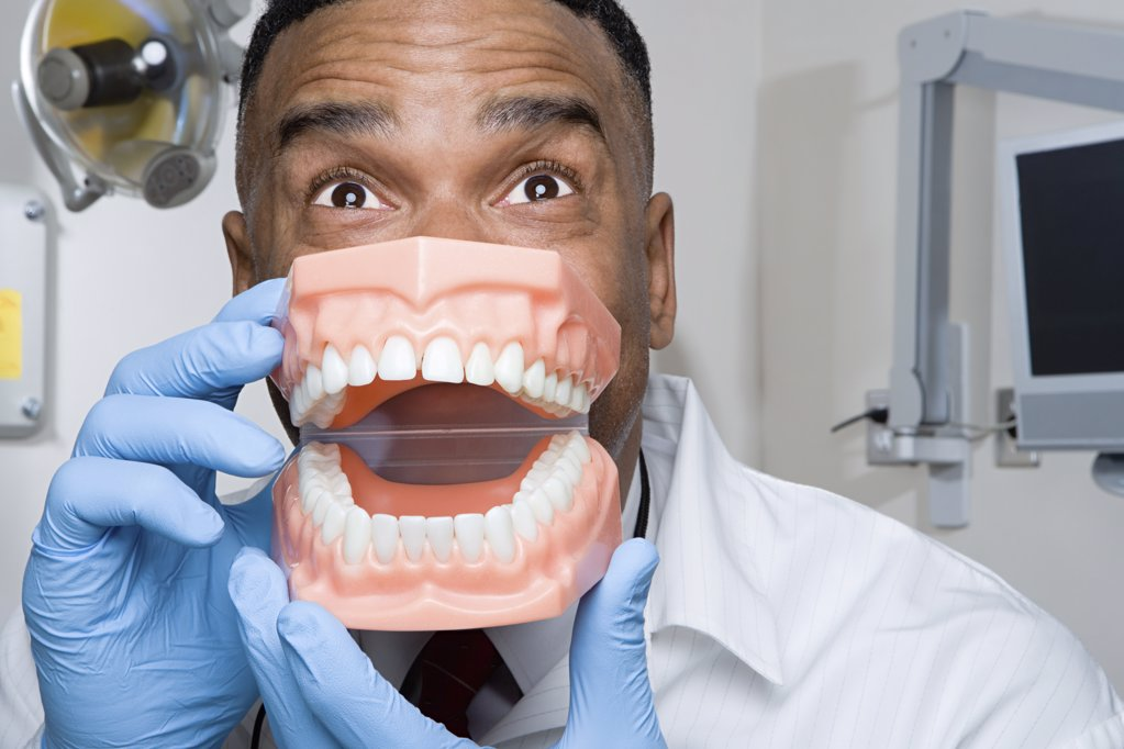 Dentist holding false teeth : Stock Photo