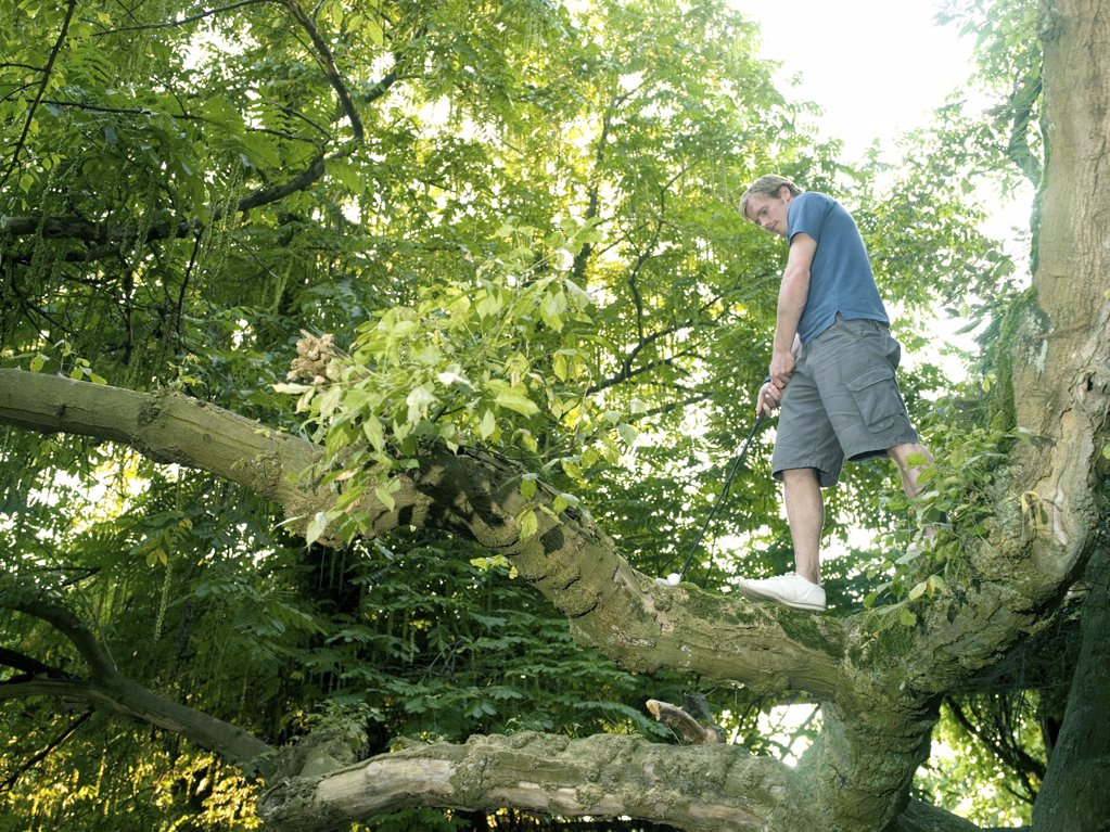 Young man playing golf in a tree : Stock Photo