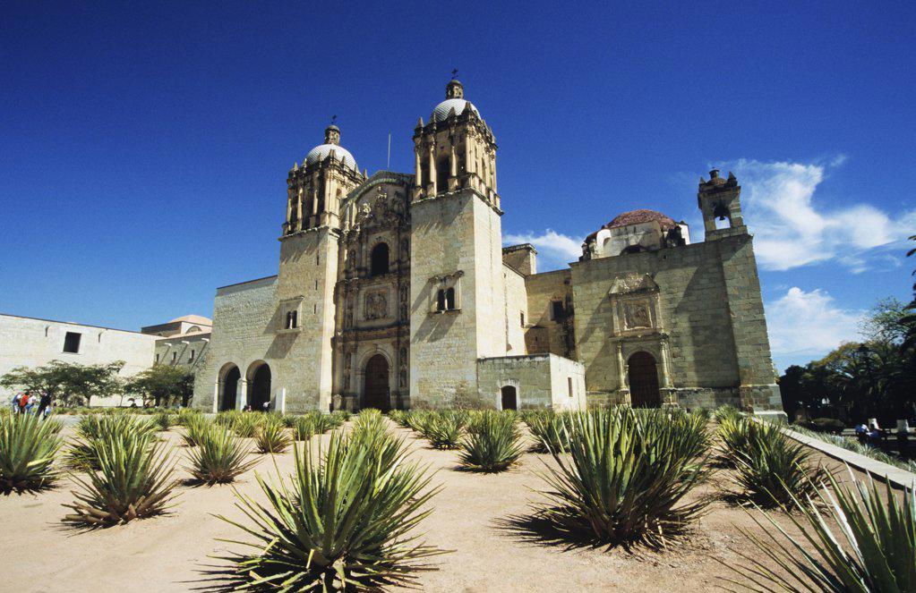 Iglesia santo domingo oaxaco : Stock Photo