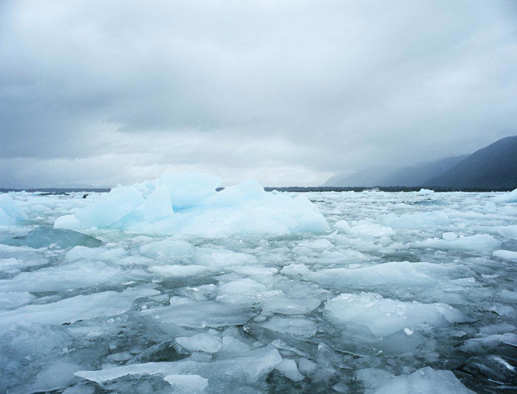 Icebergs laguna san rafael national park : Stock Photo