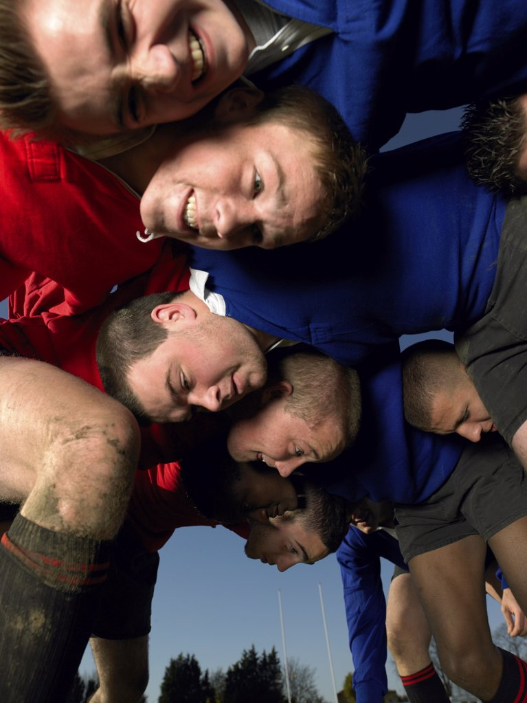 Stock Photo: 1439R-1052233 Rugby players in a scrum