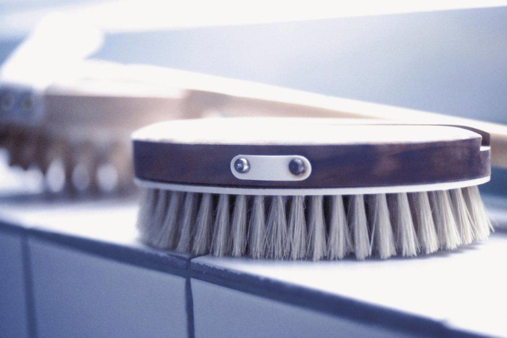 Stock Photo: 1439R-1073501 Brush