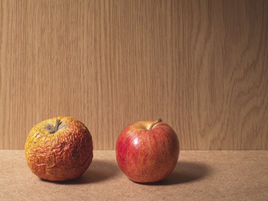 A rotten apple and a ripe apple : Stock Photo