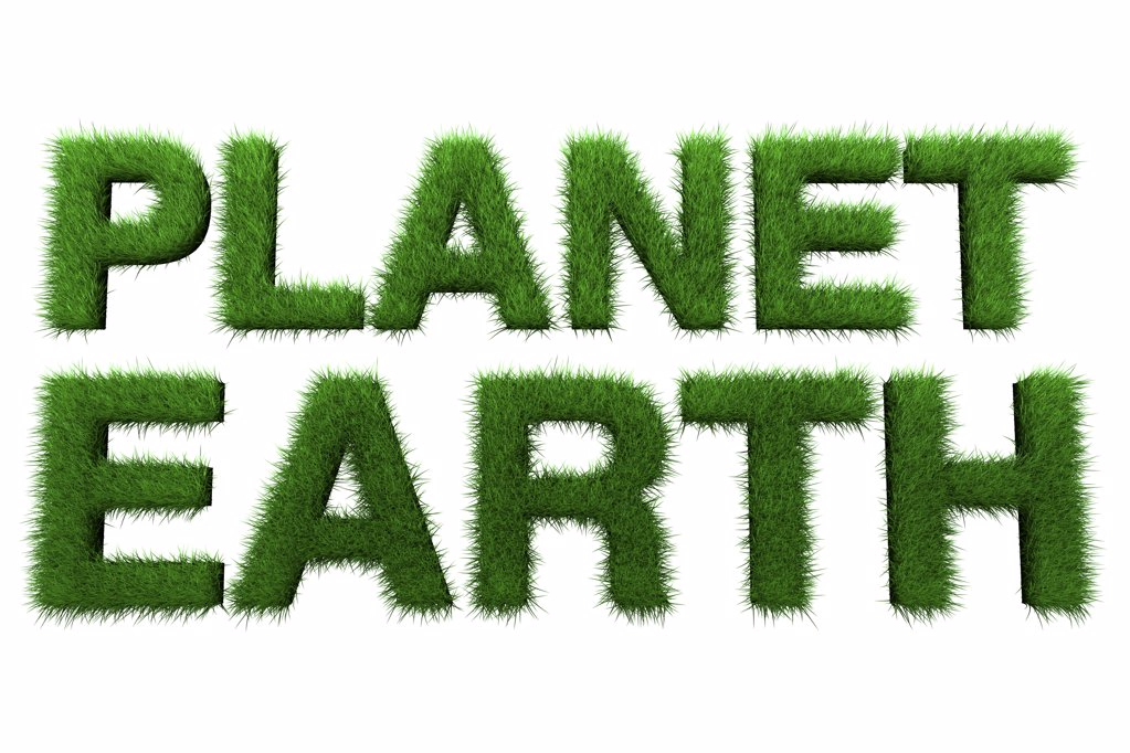 Planet earth in grass : Stock Photo