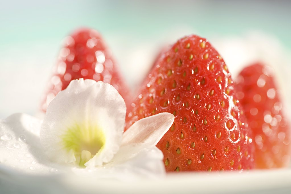 Strawberries and flower : Stock Photo