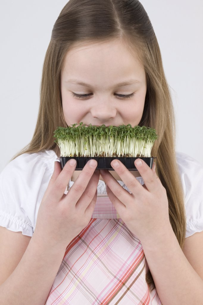Stock Photo: 1439R-1093704 Girl with tray of cress