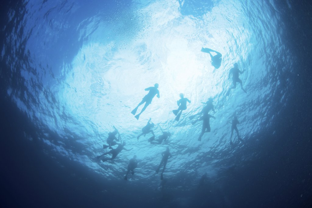 Stock Photo: 1439R-1109104 Scuba divers in sea