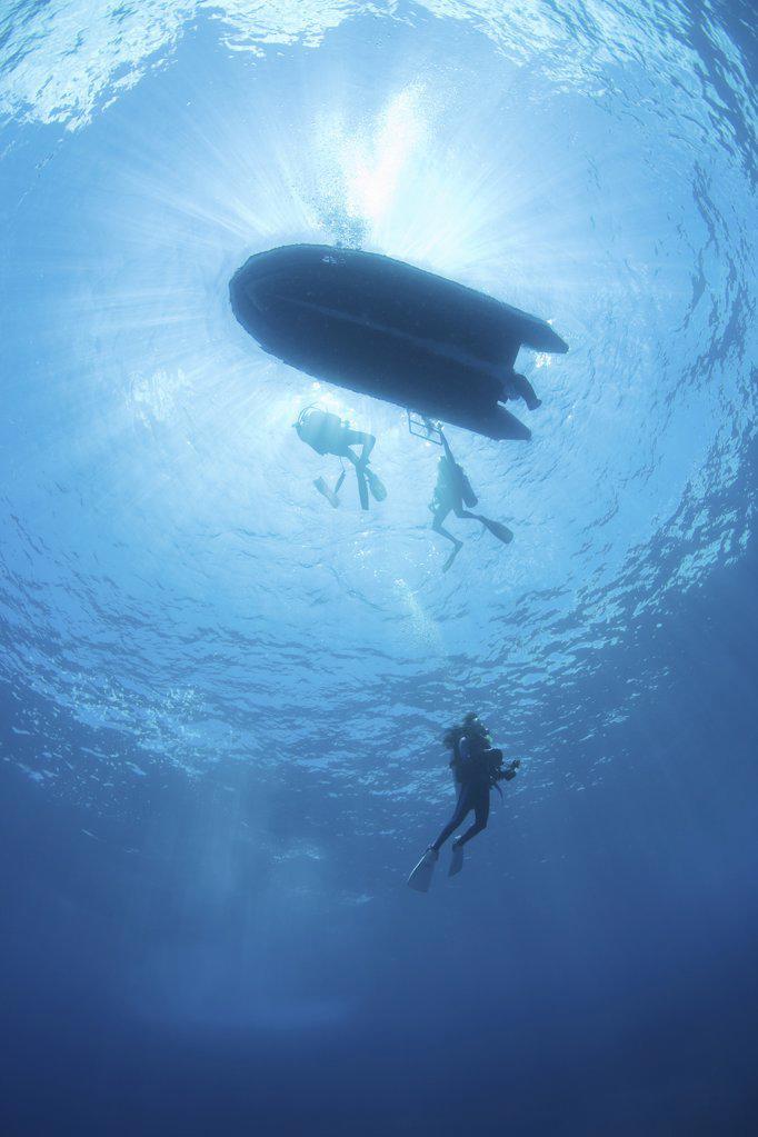 Scuba diving : Stock Photo