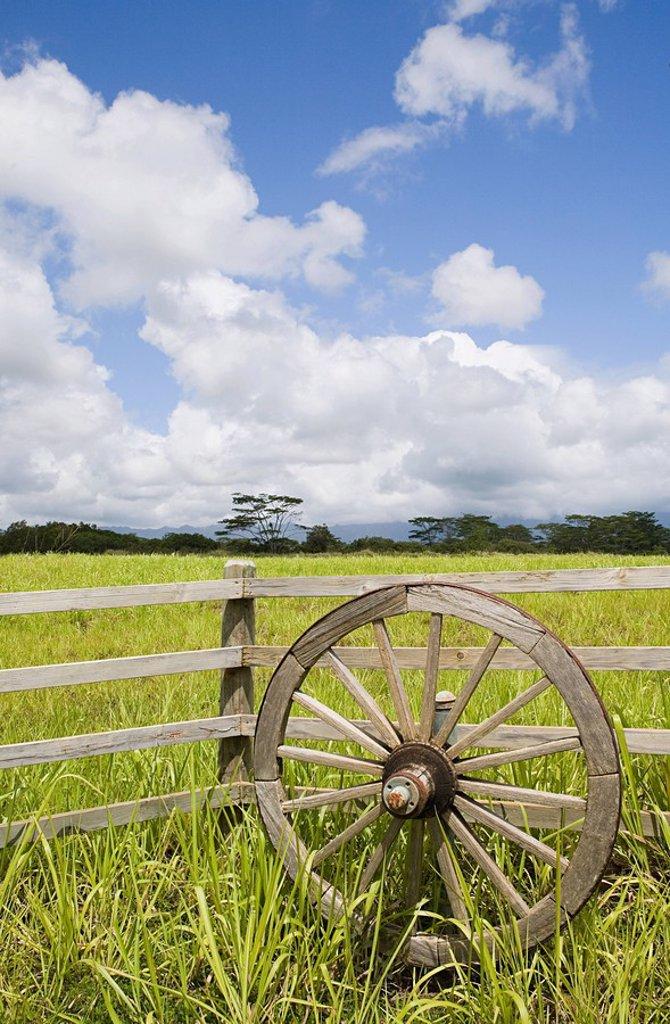 Stock Photo: 1439R-1123258 Wooden wheel and field in kauai, hawaii