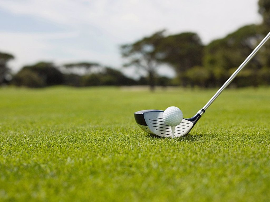 Stock Photo: 1439R-1125267 Golf ball on golf course, close up