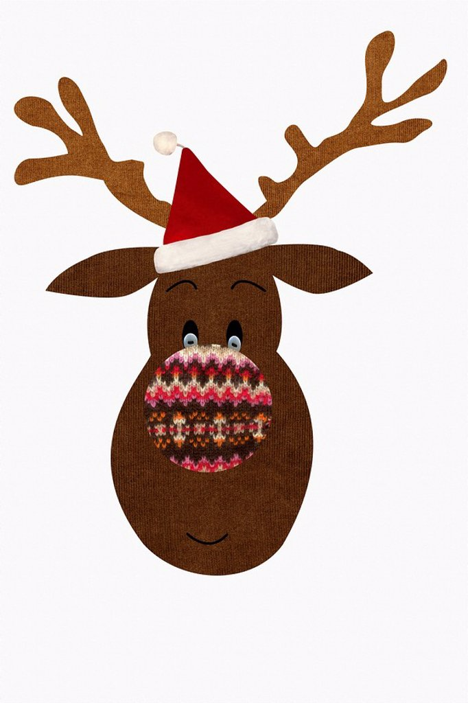 Reindeer : Stock Photo