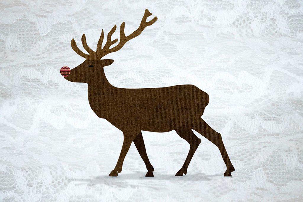 Stock Photo: 1439R-1127152 Reindeer