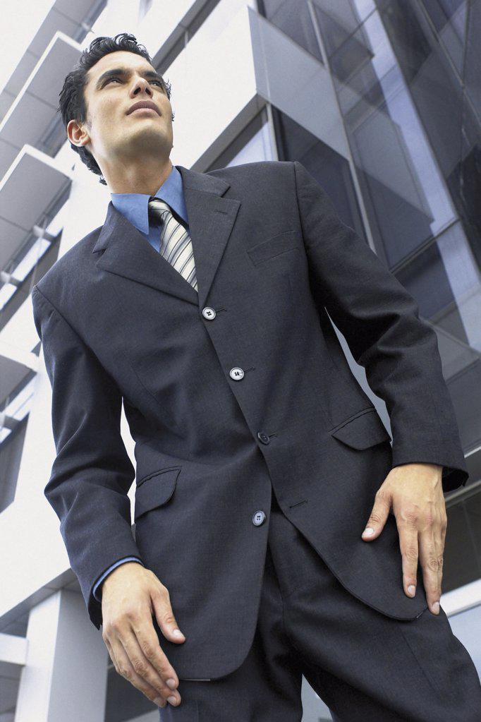 Stock Photo: 1439R-113065 Portrait of businessman