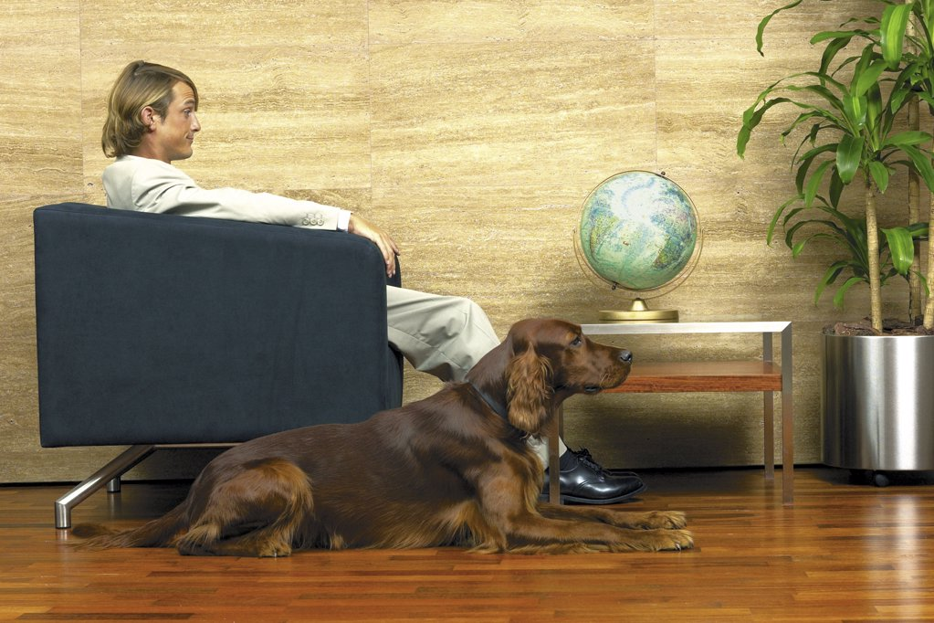 Businessman and his dog infront of a globe : Stock Photo