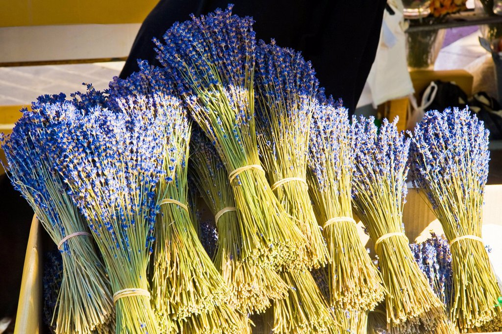 Lavender for sale, Nice, Cote d´Azur, France : Stock Photo