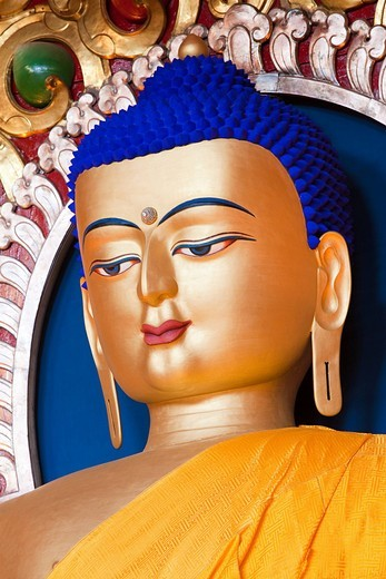 Sakyamuni Buddha, Tsuglagkhang temple, McLeod Ganj, Himachal Pradesh, India : Stock Photo