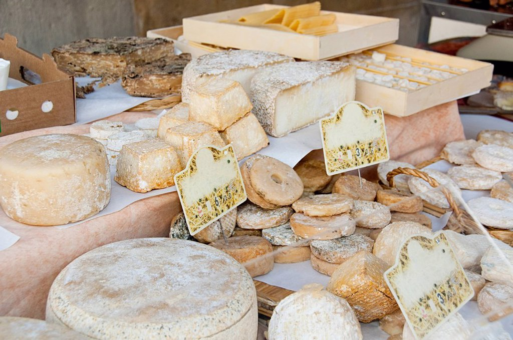 Sheeps cheese on market stall : Stock Photo