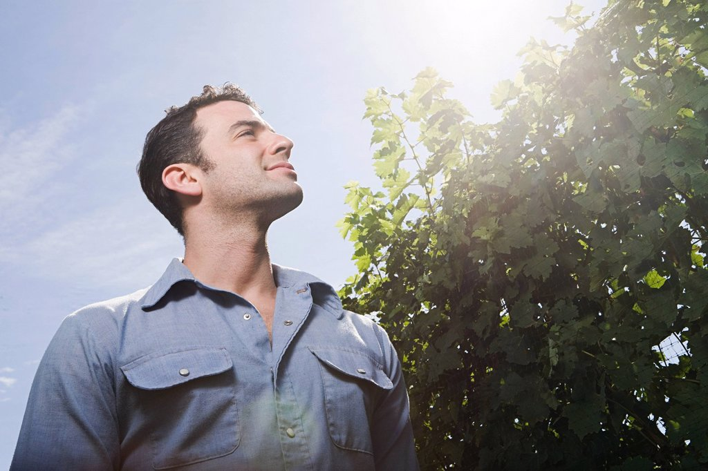 Young man in vineyard, low angle : Stock Photo