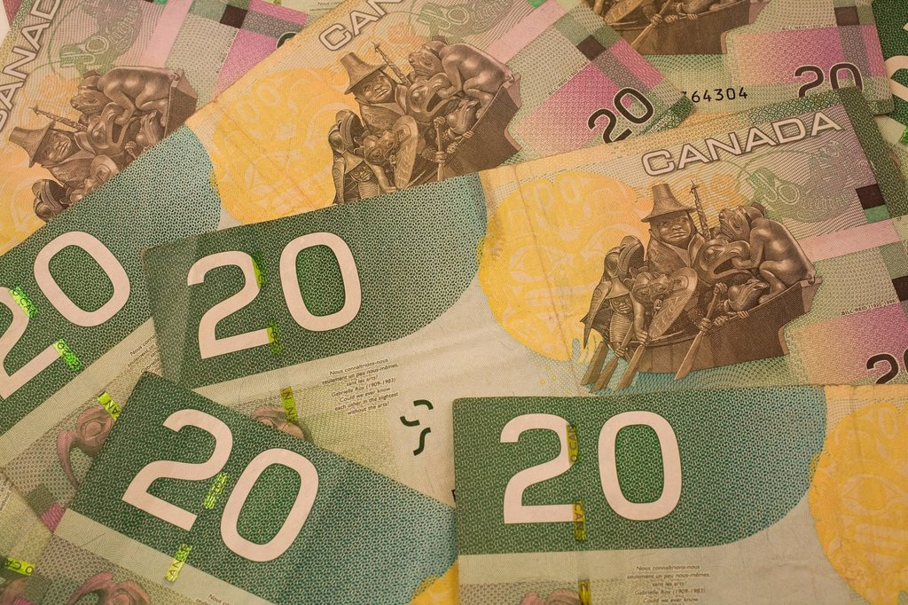 Canadian 20 dollar banknotes : Stock Photo