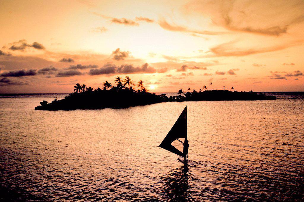 Stock Photo: 1439R-1138523 Sailboard at sunset