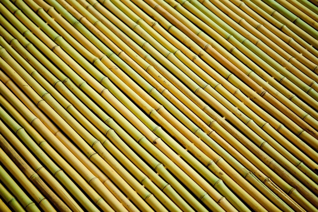Stock Photo: 1439R-1144060 Rows of bamboo wood