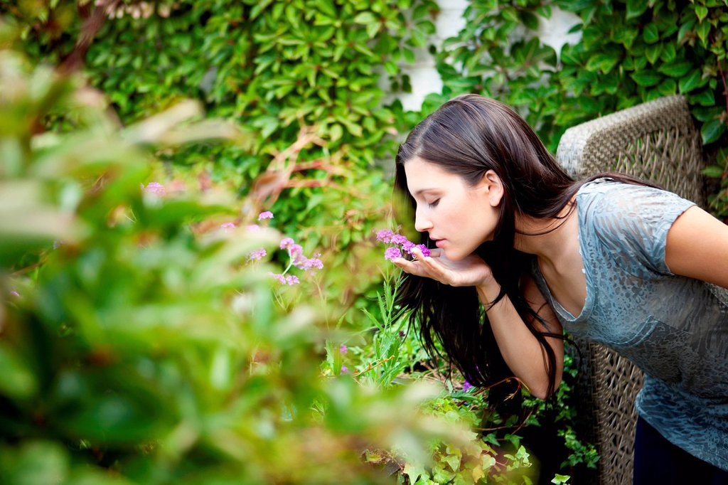 Young woman smelling flower in garden : Stock Photo