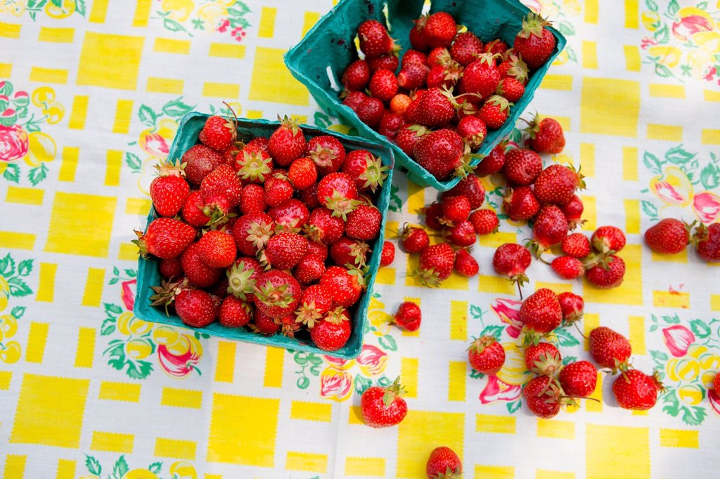 Stock Photo: 1439R-1147727 Strawberries