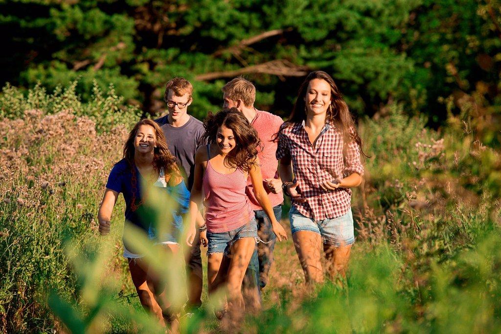 Five friends walking through field : Stock Photo