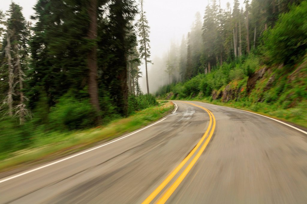 Stock Photo: 1439R-1148448 Road to Paradise Washington State Route 706, Mount Rainier National Park, Washington, USA