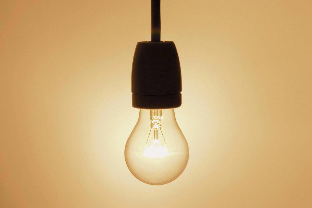 Bulb : Stock Photo