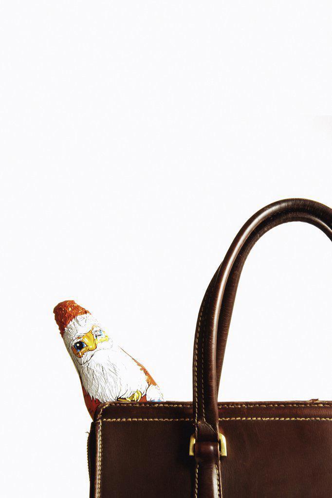 Chocolate Santa Claus in handbag : Stock Photo