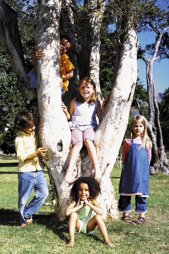 Stock Photo: 1439R-47051 Friends playing on a tree