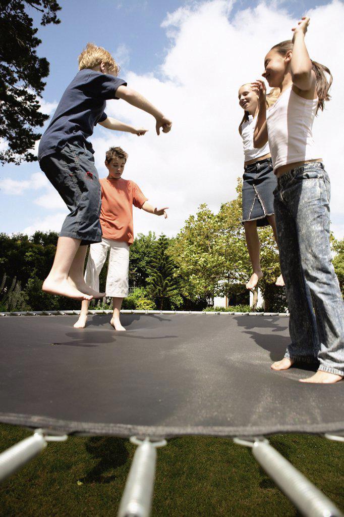 Stock Photo: 1439R-576016 Children on trampoline