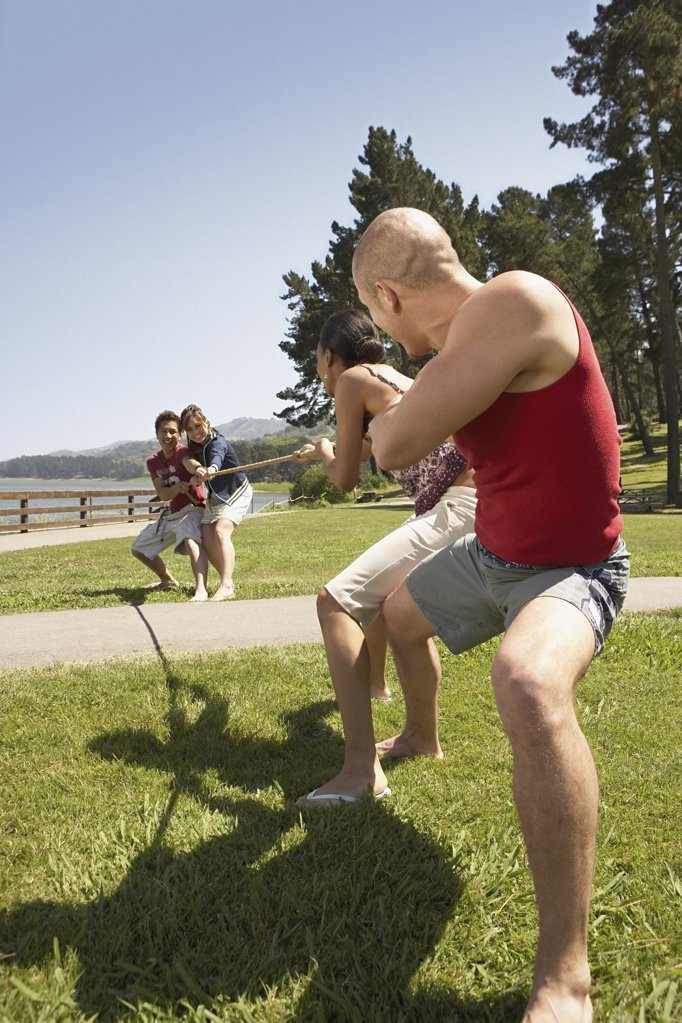 Young people playing tug of war : Stock Photo