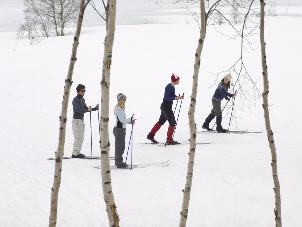 Stock Photo: 1439R-991849 Skiers trekking through the snow