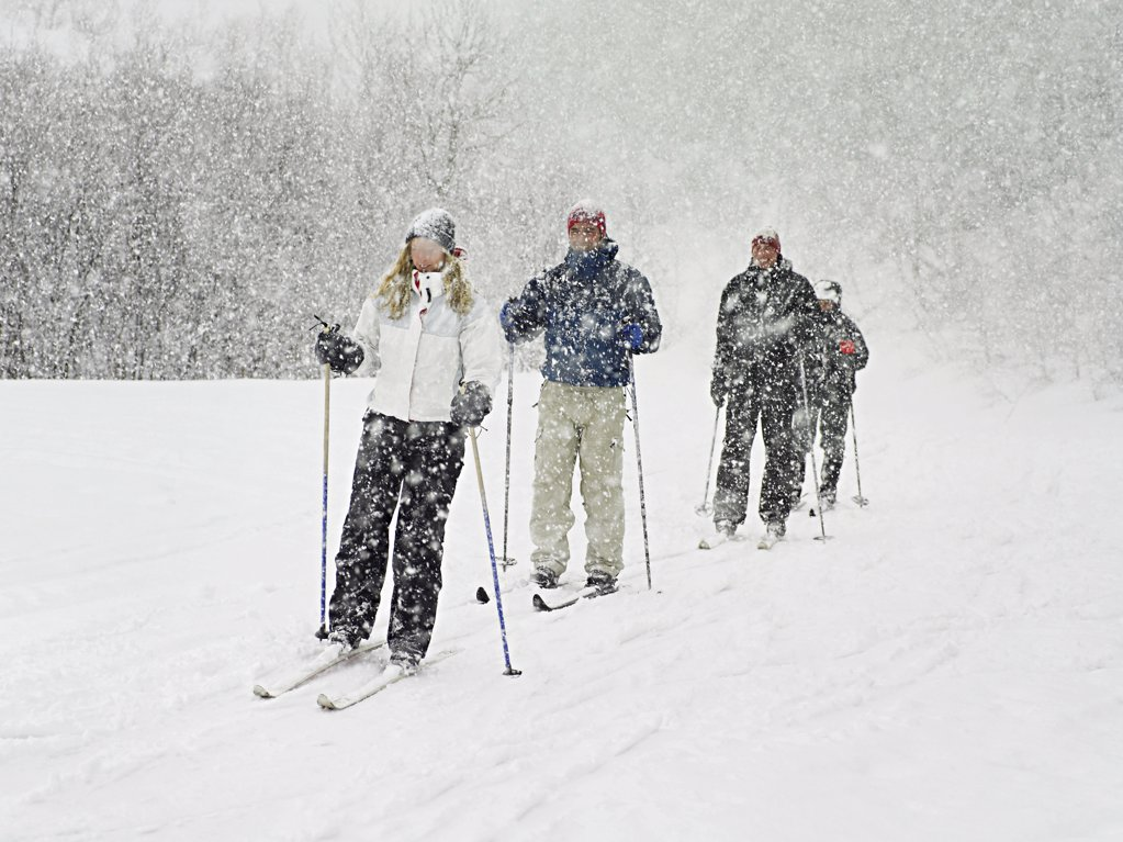 Stock Photo: 1439R-991931 Skiers trekking through a blizzard