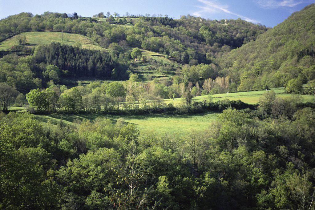 Idyllic rural landscape : Stock Photo