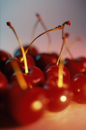 Stock Photo: 1441R-489 Close-up of cherries