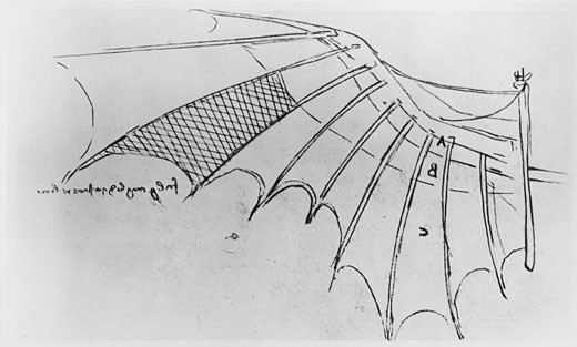Design of a ribbed wing, partly covered with taffeta Leonardo da Vinci (1452-1519 Italian) Drawing Bibliotheque de l 'Institute de France, Paris : Stock Photo