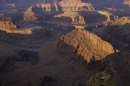 River passing through a canyon, Colorado River, Dead Horse Point State Park, Utah, USA : Stock Photo