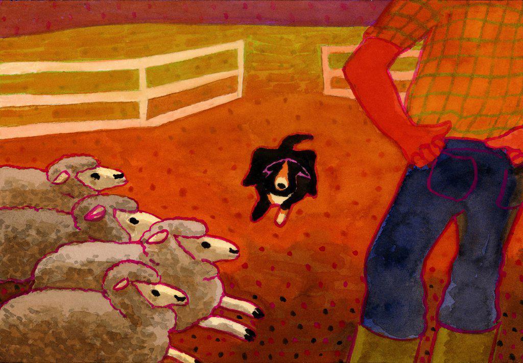 Stock Photo: 1474-235 Sheep Dog Trial  John Newcomb, Watercolor, 2005
