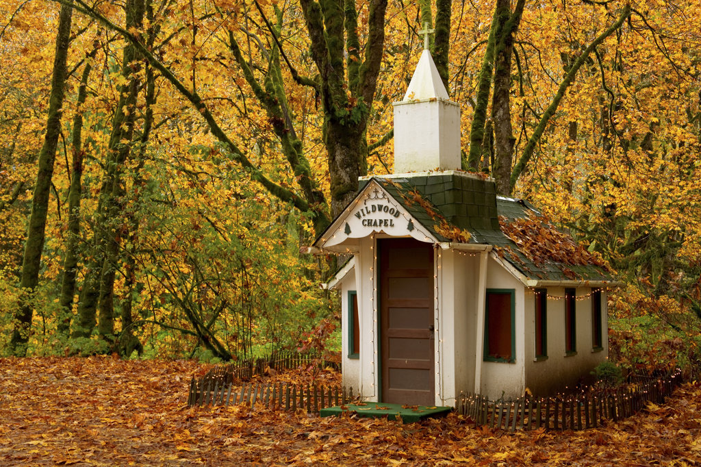 Stock Photo: 1482R-1151 Facade of a chapel in a forest