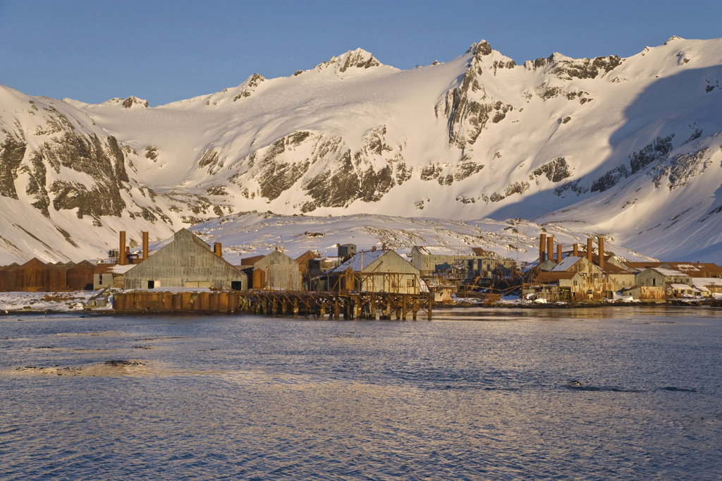 Stilt houses in front of snow covered mountains, Leith Harbour, South Georgia Island, South Sandwich Islands : Stock Photo