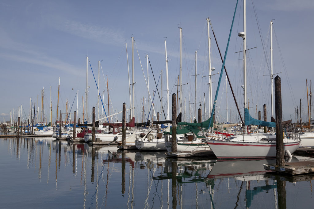 Sailboats at a dock, Port Townsend, Washington State, USA : Stock Photo