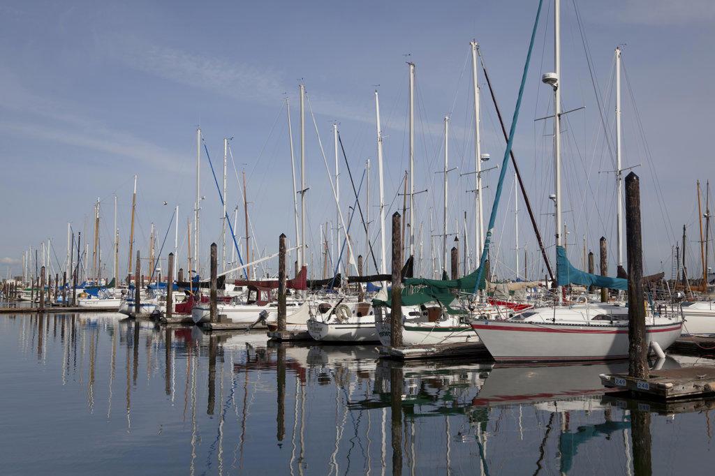 Stock Photo: 1482R-1753 Sailboats at a dock, Port Townsend, Washington State, USA