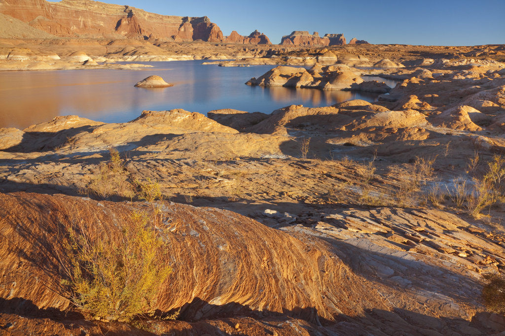 Stock Photo: 1482R-2008 High angle view of a canyon, Lake Powell, Face Canyon, Glen Canyon National Recreation Area, Utah, USA