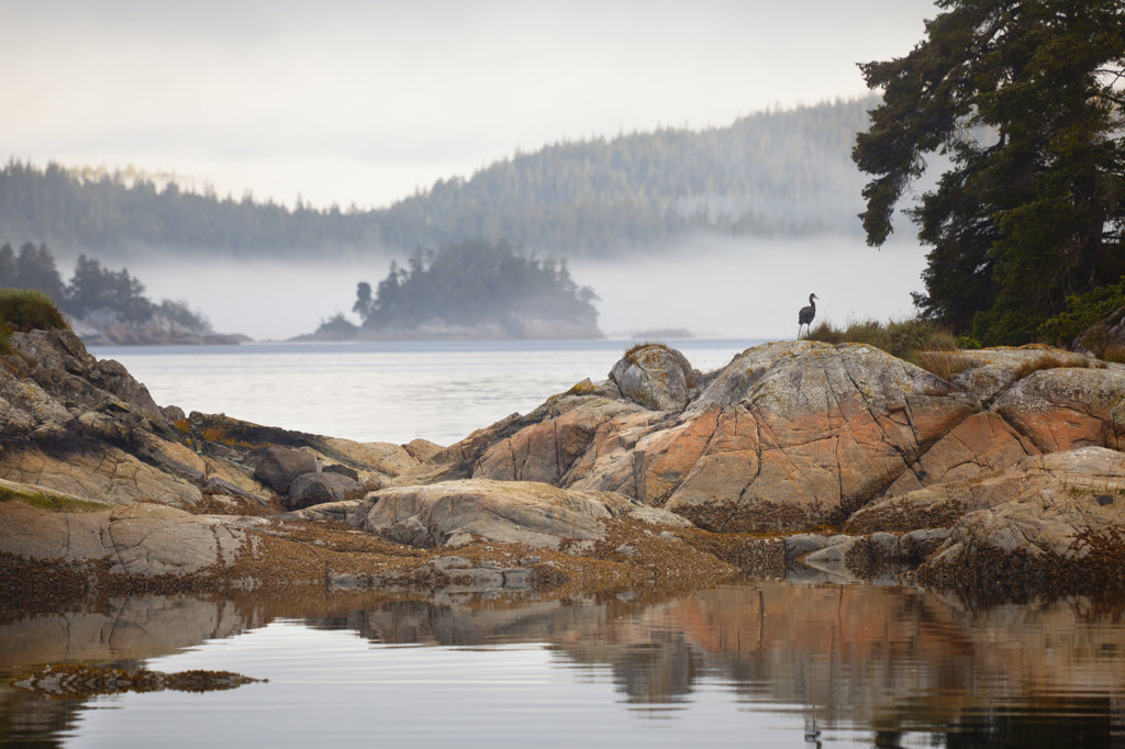 Rock formations in a strait, Village Island, British Columbia, Canada : Stock Photo