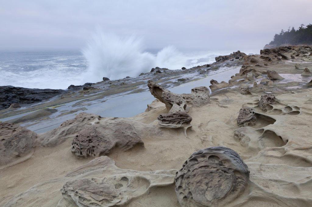 Stock Photo: 1482R-2343 USA, Oregon, Shore Acres State Park, Rocky coastline